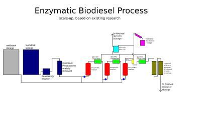 Enzymatyczny proces produkcji  biodiesla