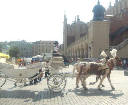 Dorożka na krakowskim rynku nr.1
